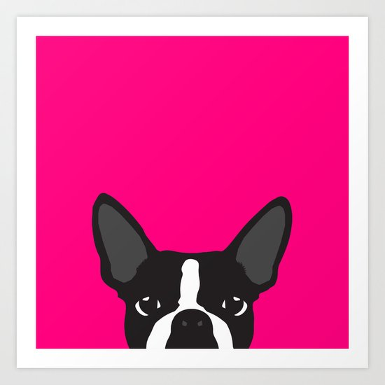 Boston Terrier Hot Pink by theresasc13