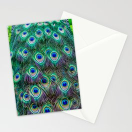 Pheasant in Prague Stationery Cards