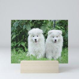 Samoyed puppy portrait Mini Art Print