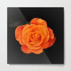 Romantic Rose Orange Metal Print