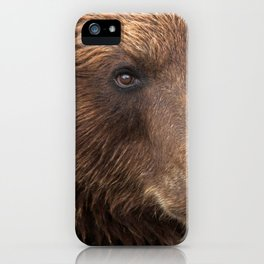 Awe Inspiring Grown Grizzly Bear Head Face Close Up Ultra HD iPhone Case