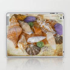 Summertime Relics Laptop & iPad Skin