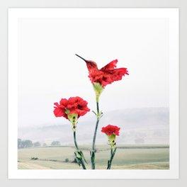 Carnation (r)evolution Art Print