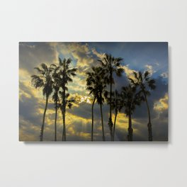 Sunbeams and Palm Trees by Cabrillo Beach Los Angeles California Metal Print