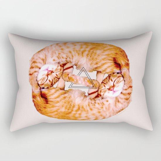 the cat and the cat Rectangular Pillow
