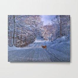 One Winter Morning Metal Print