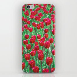 Tulip Love (red) iPhone Skin