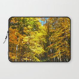 Dry Autumn River Bed Laptop Sleeve