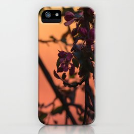 Purple Flowering Tree at Sunset iPhone Case