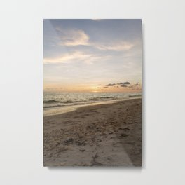 Natural Debris Metal Print