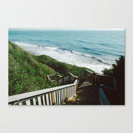 Mesa Lane Steps Canvas Print