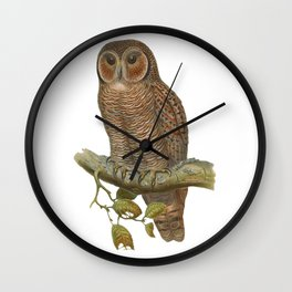 Lonely Owl Realistic Painting Wall Clock