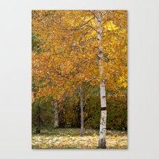 Autumn 72516 Canvas Print