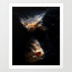 Cream Jellyfish Art Print