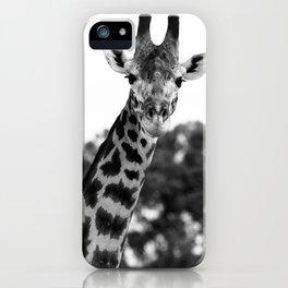 Giraffe Portrait iPhone Case