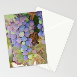 Vineyard Colors Stationery Cards