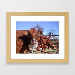 Clover, Elsie & Mac Framed Art Print