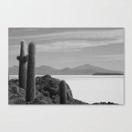 BOLIVIA Canvas Print