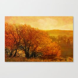 Light is coming. Canvas Print