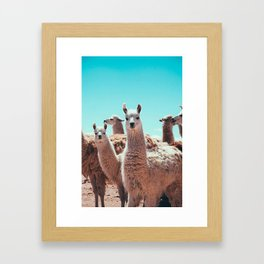 The handsome Framed Art Print