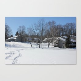 Wildwood on Walloon Winter Scene Canvas Print