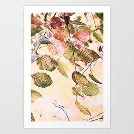 Pastell Leaves  Art Print