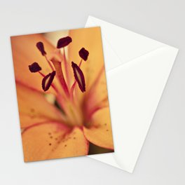 Orange lily -  floral photography Stationery Cards