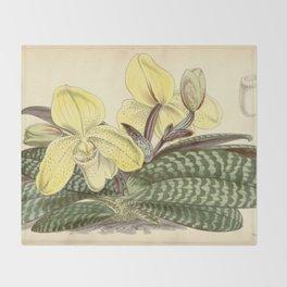 Paphiopedilum concolor Throw Blanket