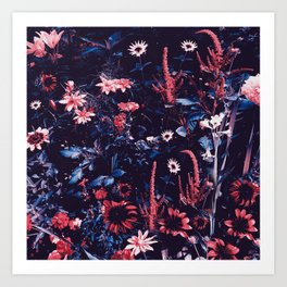 Cobalt And Carmine Bold Night Floral Art Print