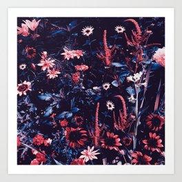 Cobalt And Carmine Bold Night Floral Art Print