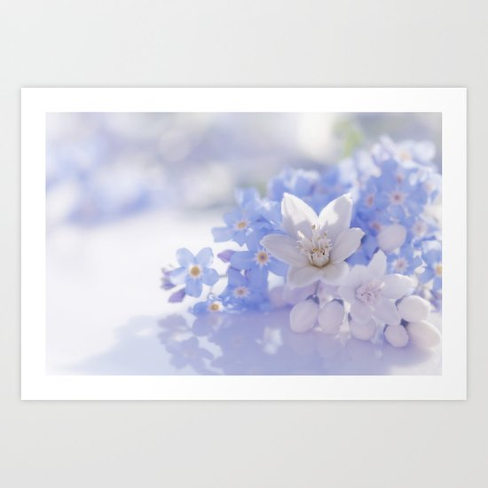 Queen and court- Springflowers in blue and white - Stilllife Art Print