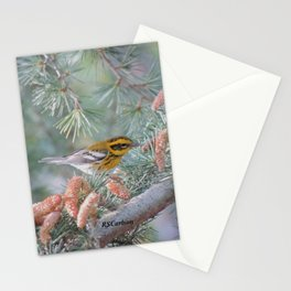 A Townsend's Warbler Spruces Up Stationery Cards