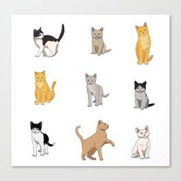 Baesic Cat Pack Canvas Print