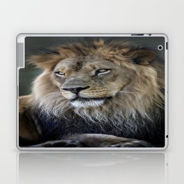 In the Jungle, the Mighty Jungle Laptop & iPad Skin