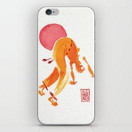 Capoeira 301 iPhone Skin