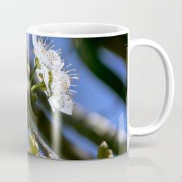 Bizzy, Bizzy Bee Coffee Mug