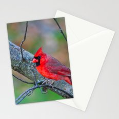 Bright Red Cardinal Stationery Cards