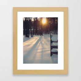 Sun Through the Trees Framed Art Print