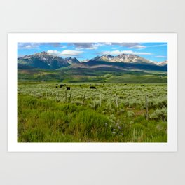 Colorado cattle ranch Art Print