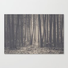 Into the depths of the forest Canvas Print