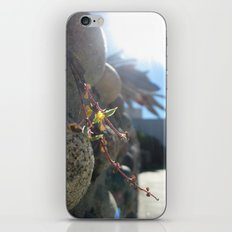 Tough Life iPhone & iPod Skin