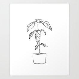 Plant Drawing Art Print