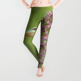 The little green frog Leggings