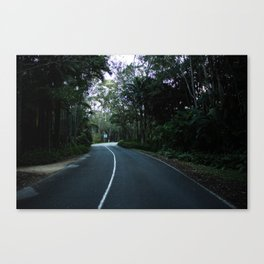 Road Into the Gardens Canvas Print