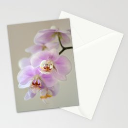 orchid close up Stationery Cards