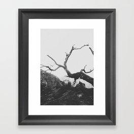 ZION II Framed Art Print