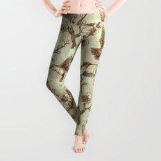 Sepia Hummingbird Pattern Leggings