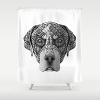 rottweiler Shower Curtains featuring Ornate Rottweiler by Adrian Dominguez