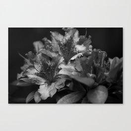 Savoring Every Moment (Black & White) Canvas Print