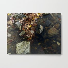 Autumn Colors in the Water Metal Print